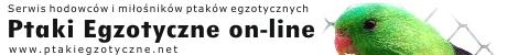 Ptaki Egzotyczne on-line