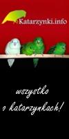 Hodowla Ptaków
